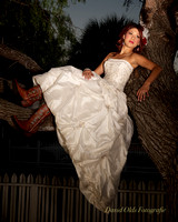 wedding dress texas