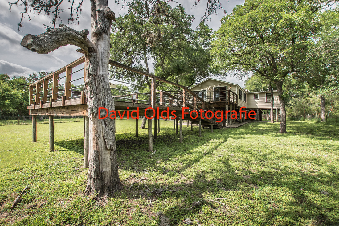 Ranch corpus christi photographer